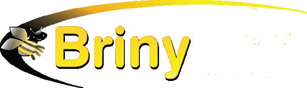 Briny Bee Logo